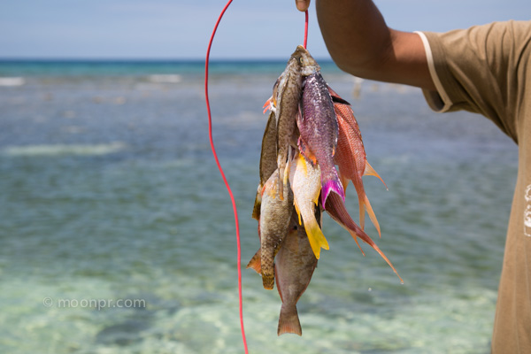Sanjay and his catch-of-the-day in Montego Bay