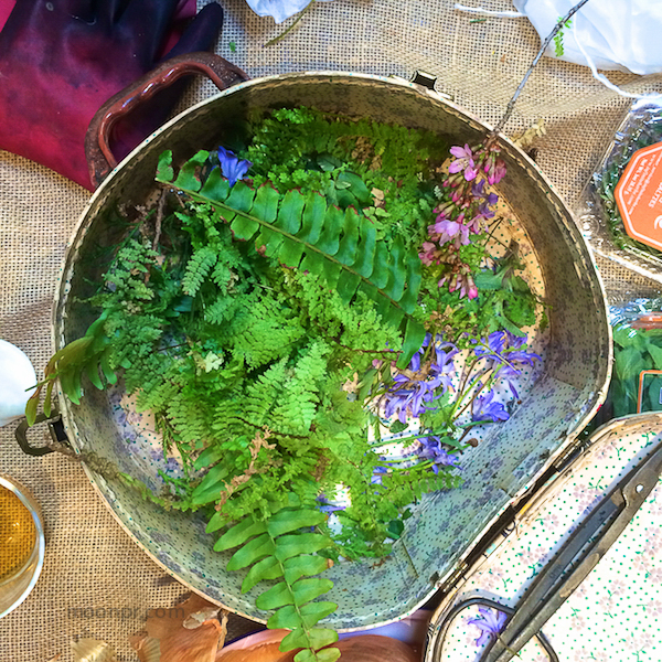 Nancy G collected fern and flowers from her yard.