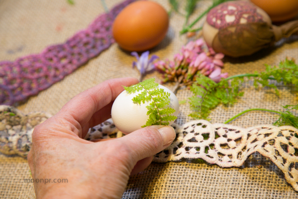 We wrapped the fern around the egg.