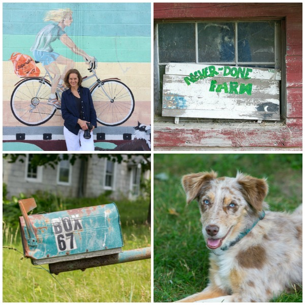 Mural in Red Hook, a farmer's dog, a vacant  farm and and worn down house.