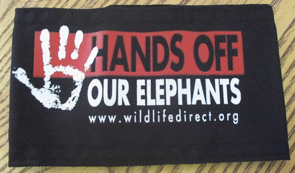 WildlifeDirect.