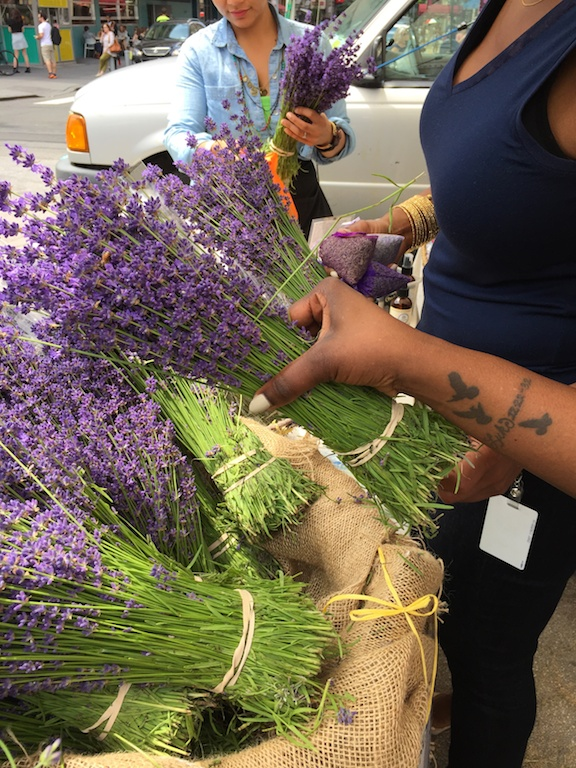 English Lavender in New York City's Union Square Greenmarket