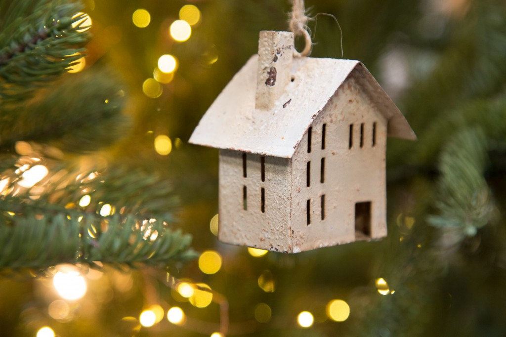 The house ornament by ©Nancy Moon