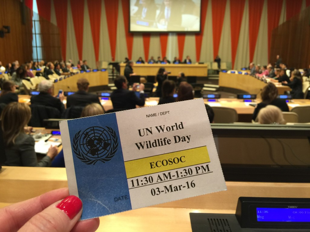 World Wildlife Day at the UN